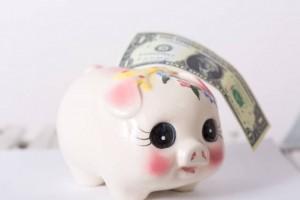 セゾン投信での教育費積立の経過、途中で積立額を減額したけど利益はでてるよ!