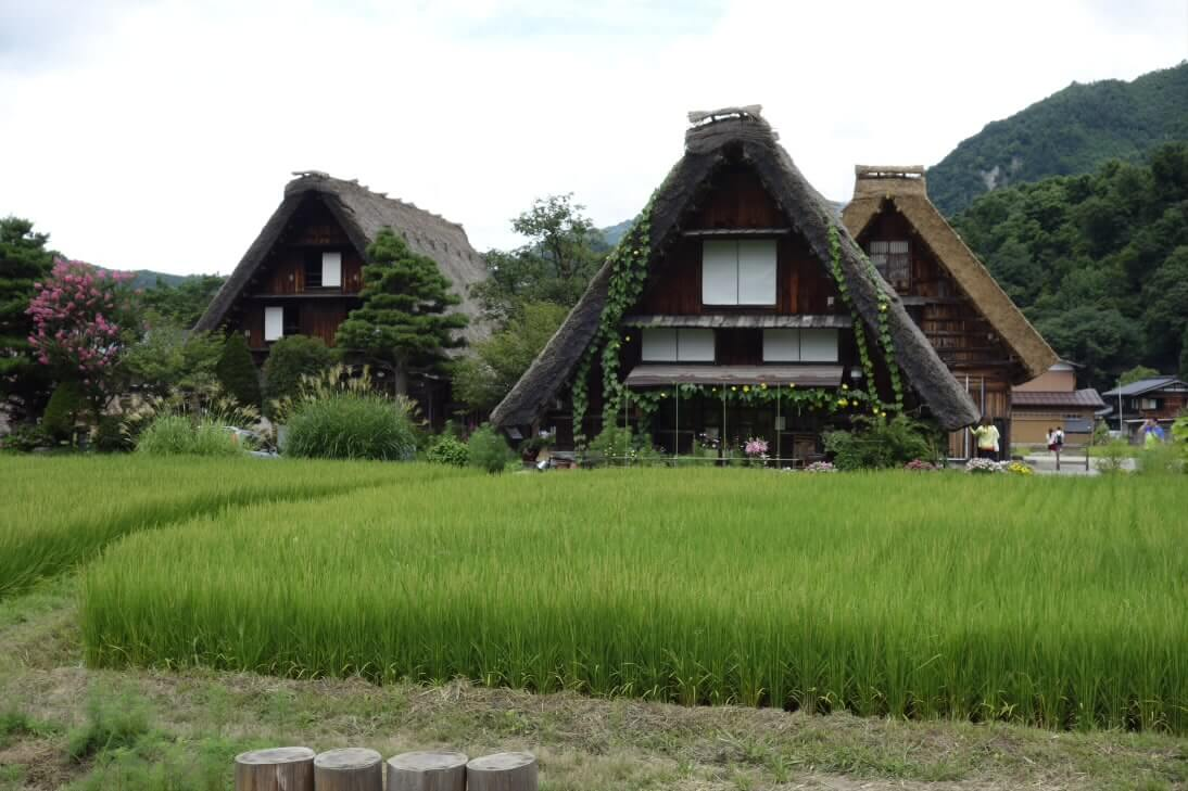 上高地&白川郷で自然を満喫!夏の旅行記
